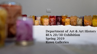 Art & art History BFA Exhibition