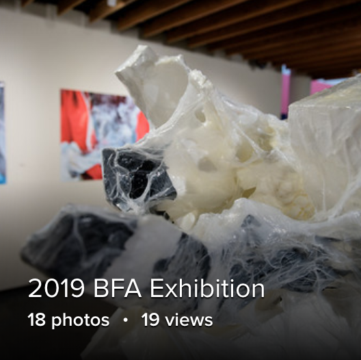 BFA Exhibition on Flikr