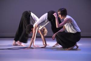 AGA Collaborative performing