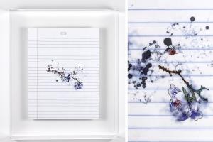 detail from Tom Schmidt's Notebook series artwork